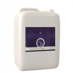 Nanolex Ex Lackreiniger 5 Liter